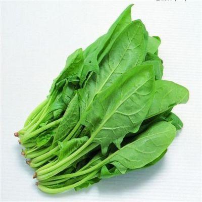 菠菜 250-350g