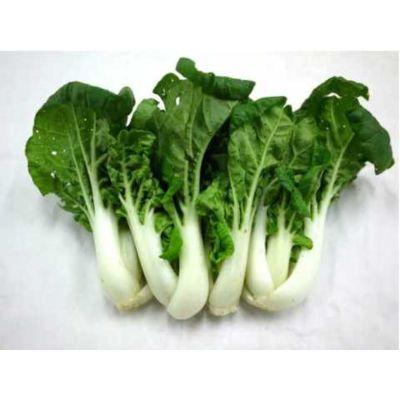 白菜 (400-500g)